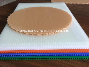 Plastic hollow profile sheet